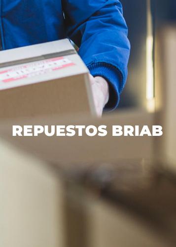 REPUESTOS BRIAB